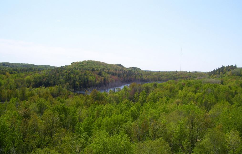 Upper Peninsula, Michigan: Teal Lake