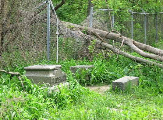 Midlothian, Illinois: Bachelor's Grove Cemetery