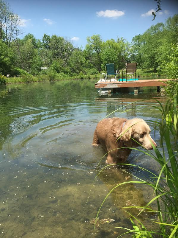 Garrettsville, Ohio: Indian Summer